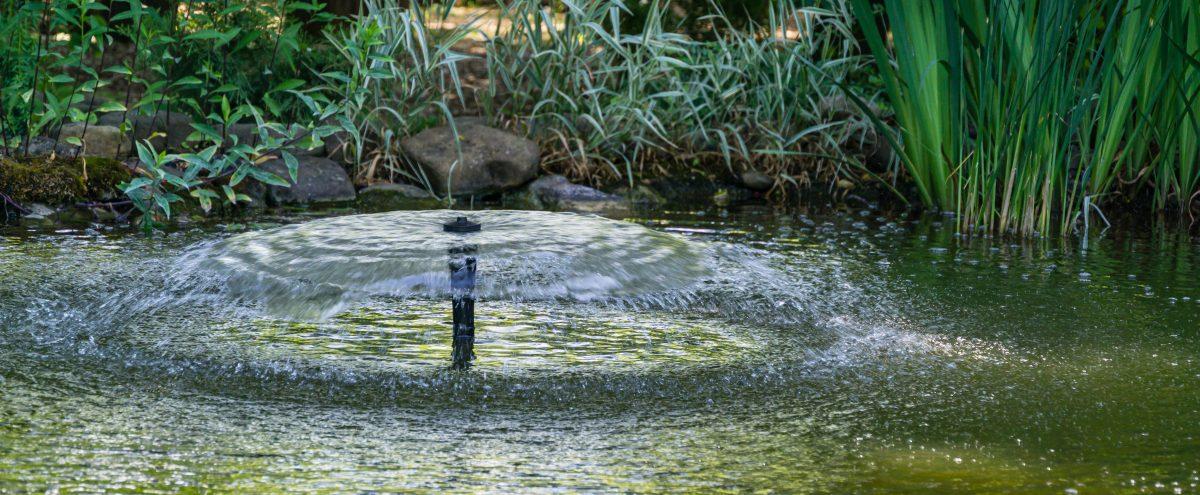 Schöne Fontäne im Teich