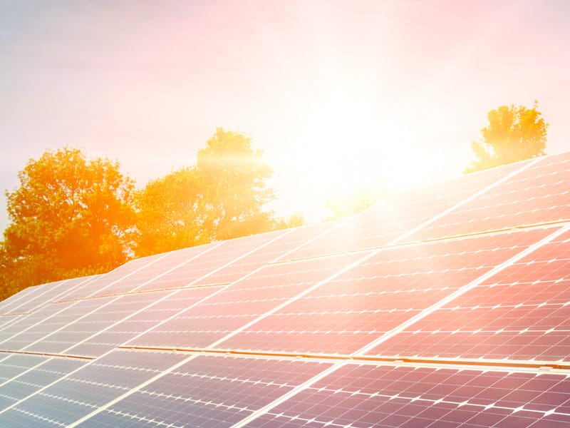 Nachhaltig handeln - solarversand.de