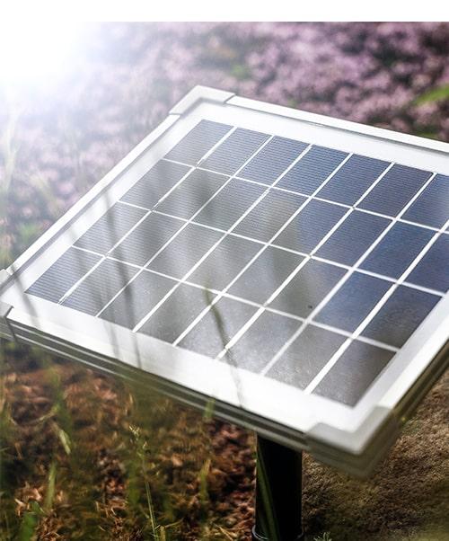 Solarmodul bei Sonnenschein