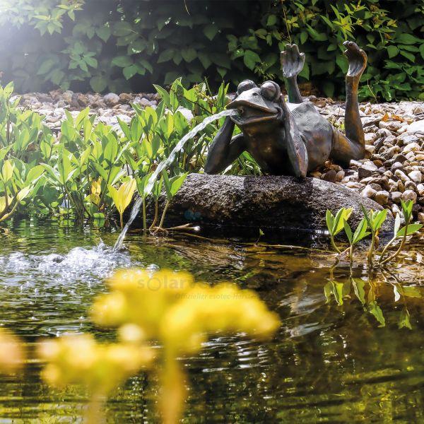 Solarbetriebener Wasserspeier Frosch