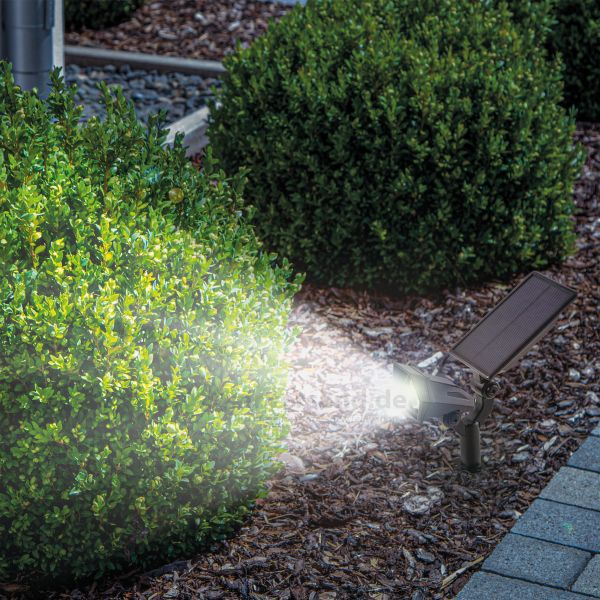 Solar LED-Gartenspot mit kaltweißen Licht