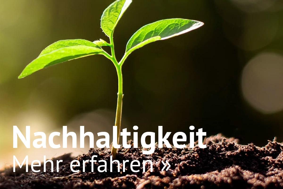 Nachhaltigkeit bei solarversand - esotec GmbH