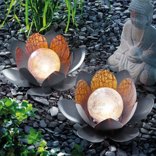 Bezauberndes Solar Lotusblüten Duett